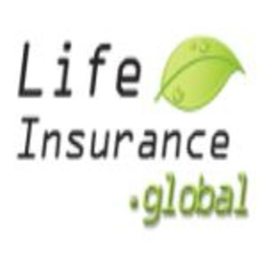 Portrait of Life Insurance