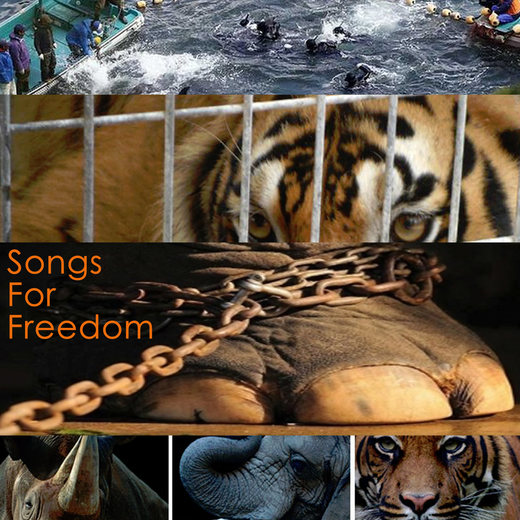 Portrait of Songs For Freedom