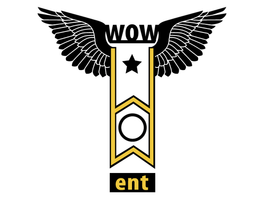 Portrait of W.O.W Entertainment