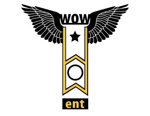 Portrait of W.O.W Entertainment