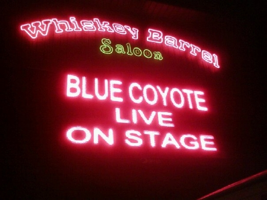 Portrait of Bluecoyoteband