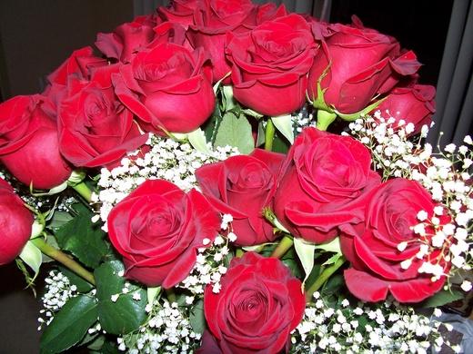 Untitled image for Desert Rose