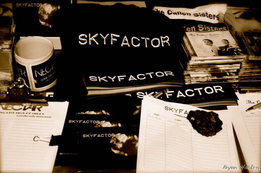 Untitled image for Skyfactor