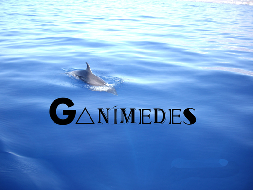 Portrait of Ganímedes