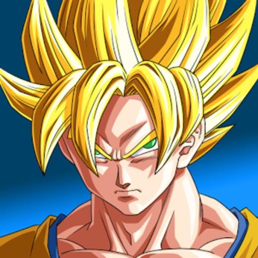 Portrait of Dragon Ball Z Merchandise