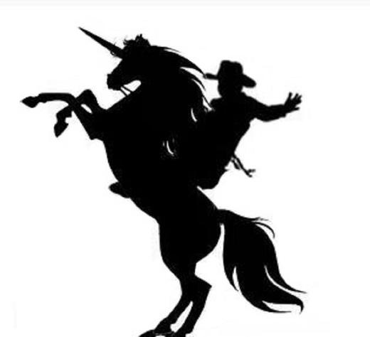 Portrait of Unicorn Rodeo
