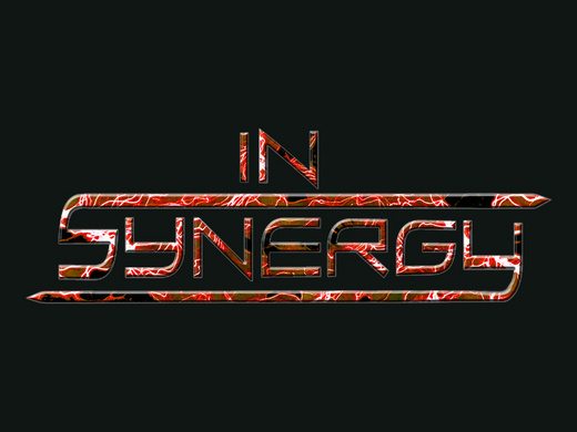 Portrait of In Synergy