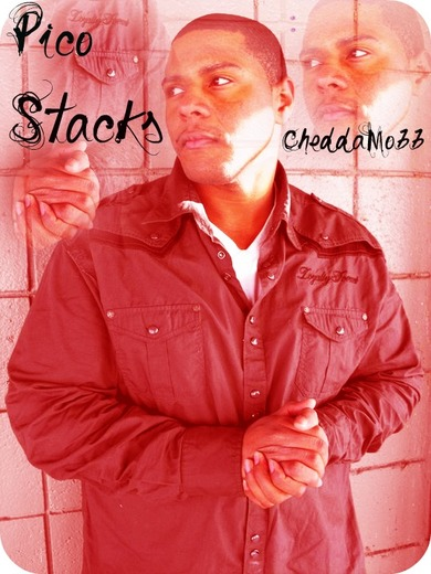 Portrait of Pico Stacks