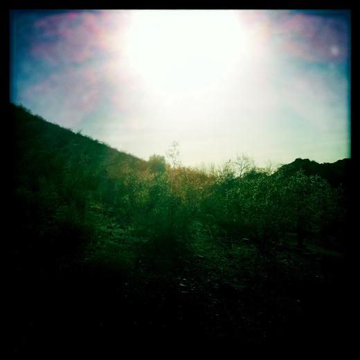 Untitled image for Desert Sleep
