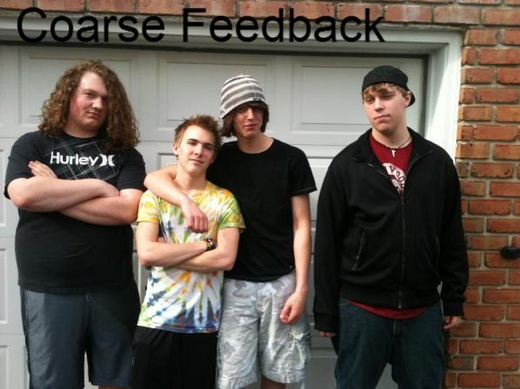 Portrait of Coarse Feedback