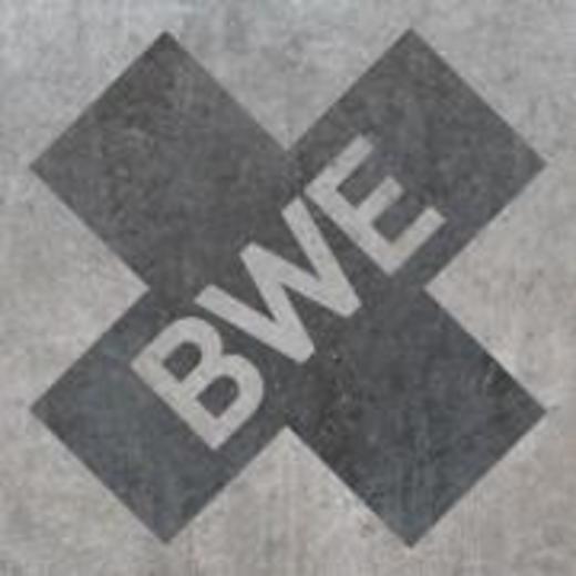 Portrait of BWE