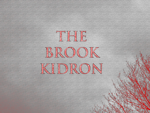 Portrait of The Brook Kidron