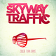 Portrait of Skyway Traffic