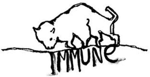 Portrait of immune