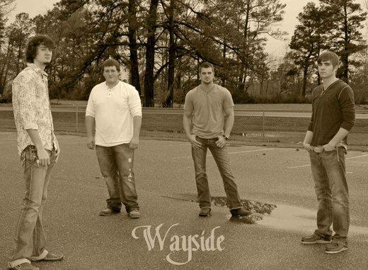 Untitled image for Wayside