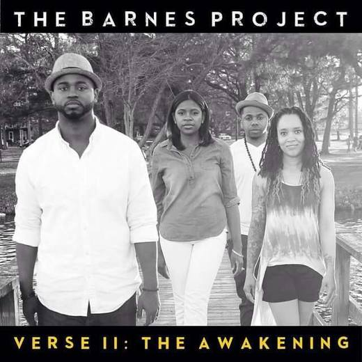 Portrait of The Barnes Project