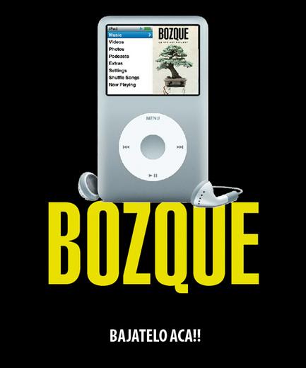 Portrait of bozque