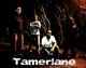 Portrait of Tamerlane