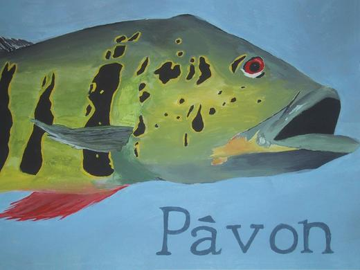 Untitled image for pavon