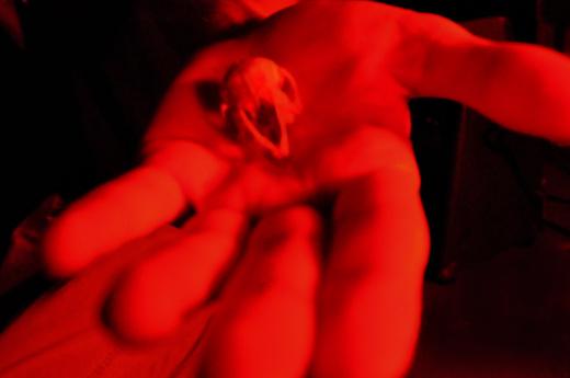 Untitled image for WOJCIK