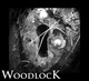 Portrait of Woodlock