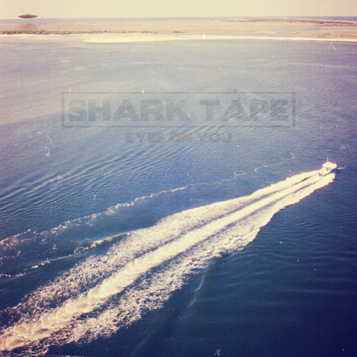 Portrait of Shark Tape