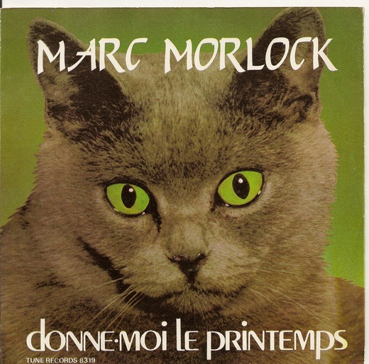 Untitled image for Marc Morlock