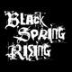 Portrait of Black Spring Rising