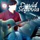 Portrait of David Segovia