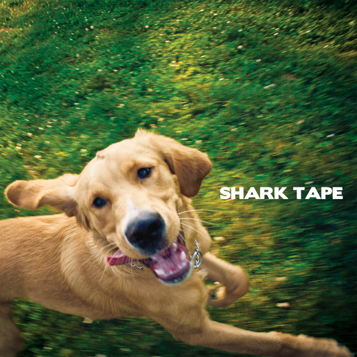 Untitled image for Shark Tape