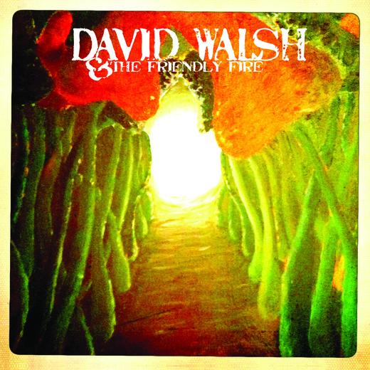 Portrait of David Walsh & The Friendly Fire