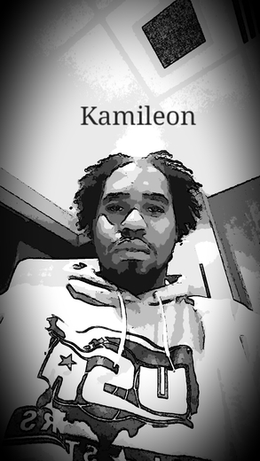 Untitled image for Kamileon