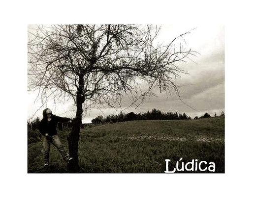 Untitled image for Ludica