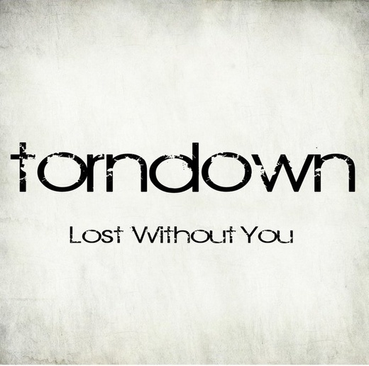 Portrait of torndown