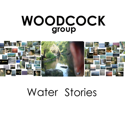 Portrait of Woodcock Group