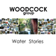Portrait of Woodcock Group