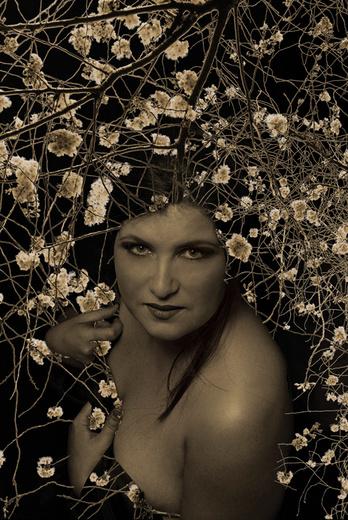 Untitled photo for Caroline Spence