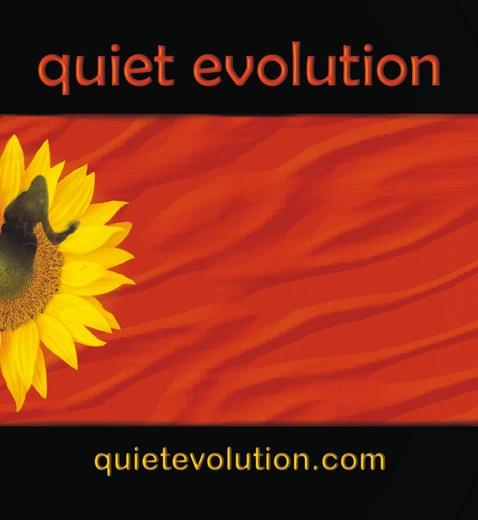 Untitled photo for Quiet Evolution