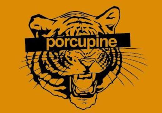 Portrait of Porcupine