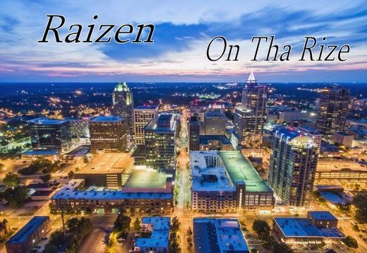 Untitled image for Raizen