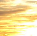 Portrait of sunny cloud