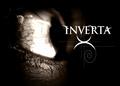 Portrait of INVERTA