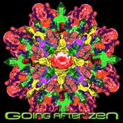 Portrait of Going After Zen