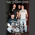 Portrait of Ray Street Park