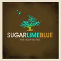 Portrait of Sugar Lime Blue