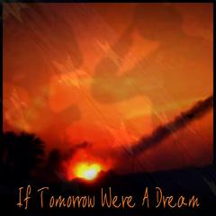 Portrait of If Tomorrow Were A Dream
