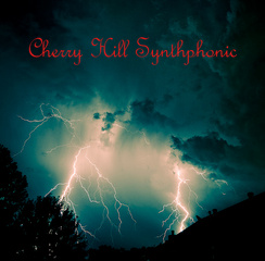 Portrait of Cherry Hill Synthphonic