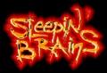Portrait of Sleepin Brains