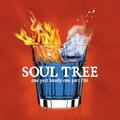 Portrait of Soul Tree