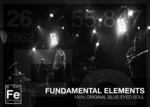 Portrait of Fundamental Elements